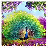 DIY 5D Diamond Painting, Staron Peacock Diamond Embroidery Cross Stitch Kit 5D Diamond Rhinestone Painting Wall Crystals Embroidery Home Decor Craft (A)