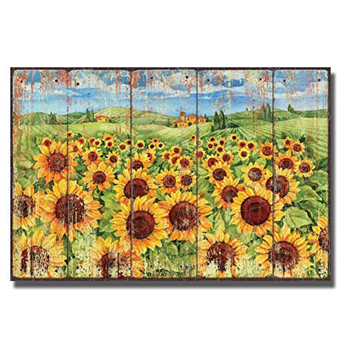 Sunflower Field by Paul Brent Premium Gallery-Wrapped Canvas