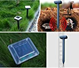 Solar Pest Repellers - Best Reviews Guide