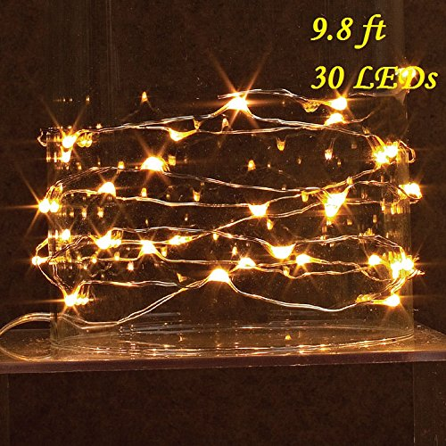 3M/9.8Ft 30 LED Copper Wire String Lights, GuanYuanGuang Fairy Firely Battery Operated Micro Lights for Girls Room, Valentines Day, Indoor Decor (Yellow)
