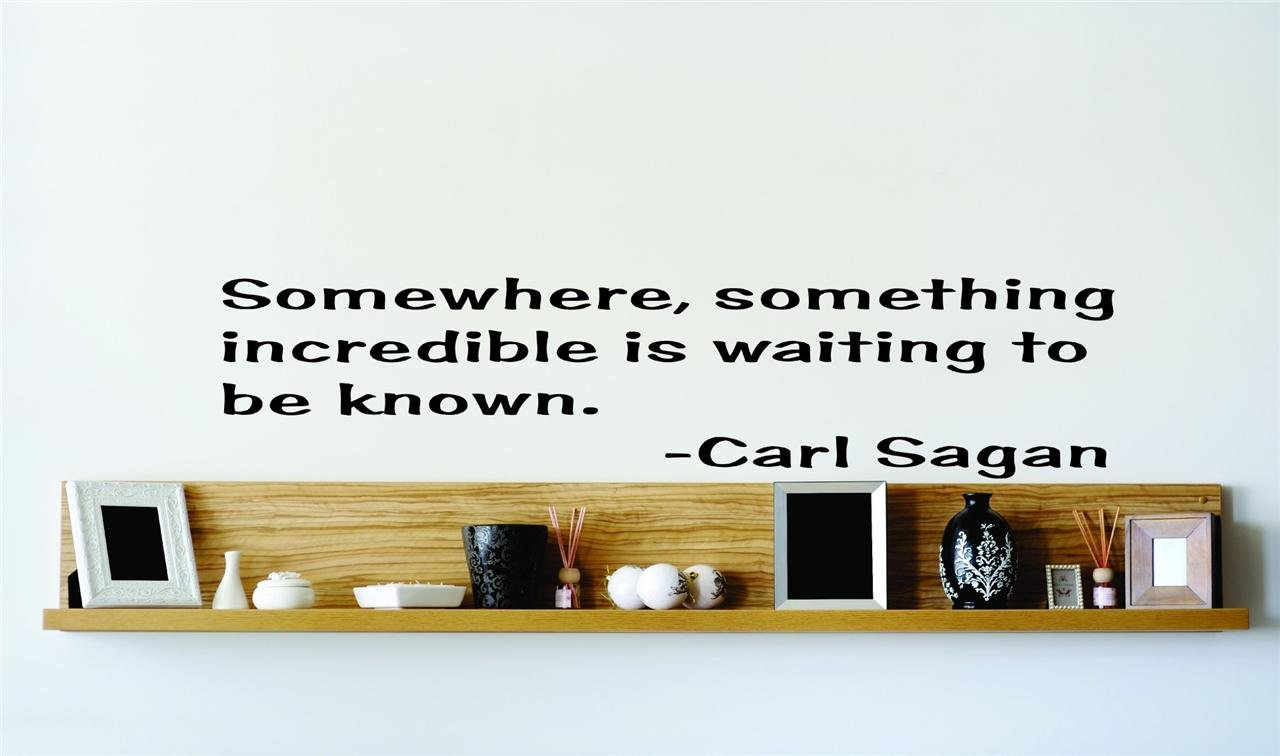 Carl Sagan Famous Inspirational Life Quote   Picture Art Image Living Room  Bedroom Home Decor Graphic ...