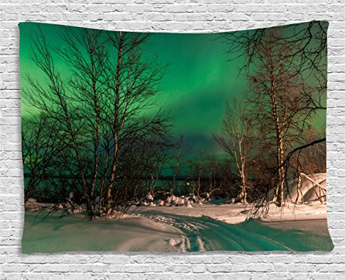 Ambesonne Aurora Borealis Tapestry, Snowy Frozen Road Path Between Leafless Trees Finland Park, Wall Hanging for Bedroom Living Room Dorm, 60 W X 40 L Inches, Green White ()