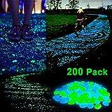 Sunnest 200 Pcs Glow in the Dark Garden Pebbles for Walkways/Garden/Path/Fish Tank/Aquarium, Decorative Stones(Green &Blue)