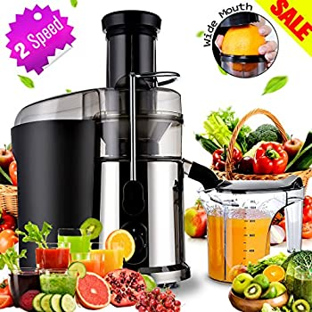 Argus Le Slow Masticating Juicer Reviews : Amazon.com: Electric Juicer Masticating Juicers Fruit, veggies, Greens Juice Extractor Juicer ...