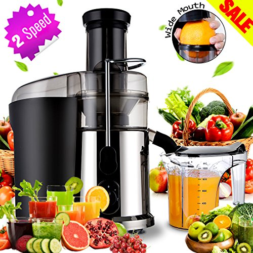 Electric Juicer Masticating Juicers Fruit, Veggies, Greens Juice Extractor Juicer with 1L Custom Juice Cup Fruit Squeezer 850Watt Juice Maker Stainless Steel for Hard/Soft Fruits and Greens