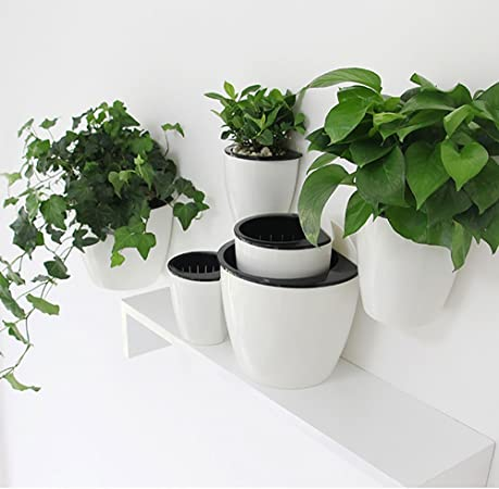 Sungmor self watering Wall Planter product image