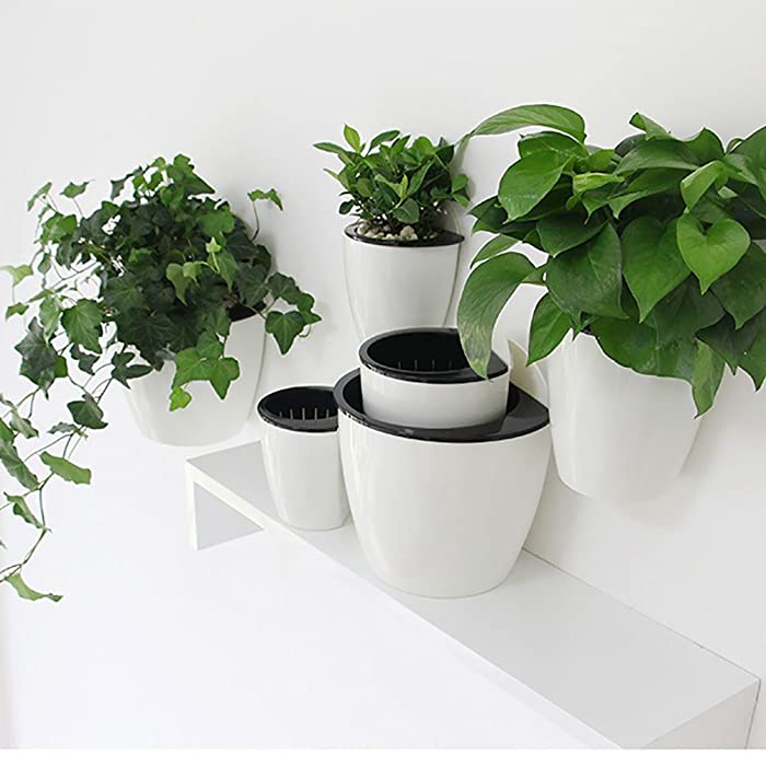 Sungmor Gardening 3 Pieces Creative Plastic Hanging Planter, Self Watering Flowerpot, Wall Mounted Plants Holder w/ Long Time Water Storage Function (Small (13.7cm10.7cm))