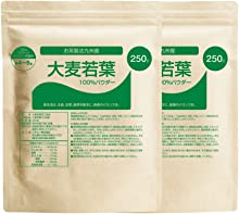 nichie 九州産 お茶製法 大麦若葉 100% 青汁 500g(250g×2袋)