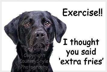Labrador negro de perro imán para nevera con texto diseño de ...