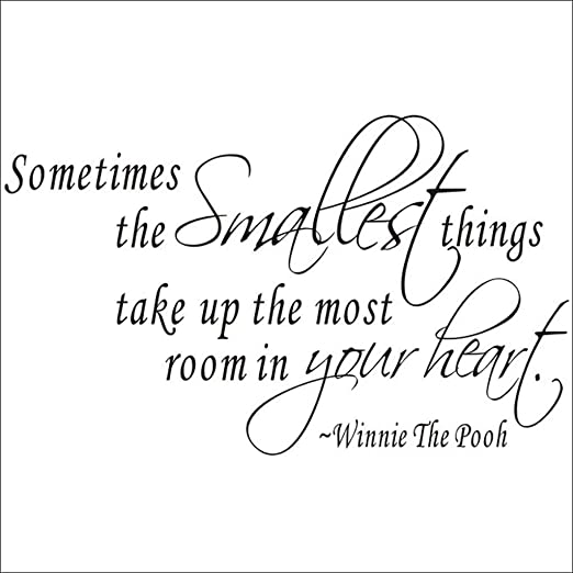 Sometimes the Smallest Things Take Up The Most Room in Your Heart Bedroom Quote Decors Wall Saying Decals Quote for Home Wall Stickers Nursery Room Decor 2