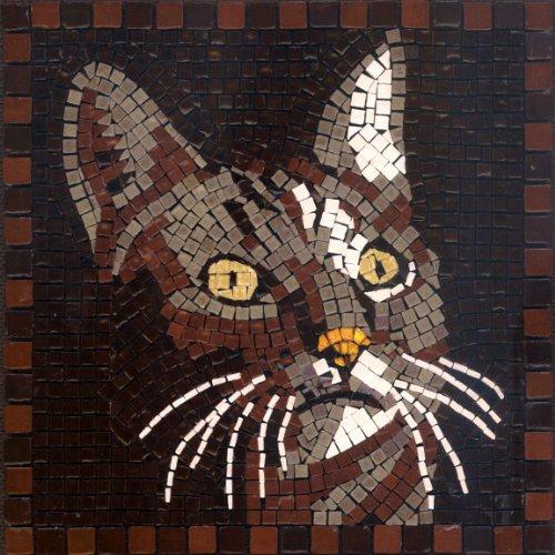 DIY Mosaic Art Kit 7'' Square, 20x20cm, Cat