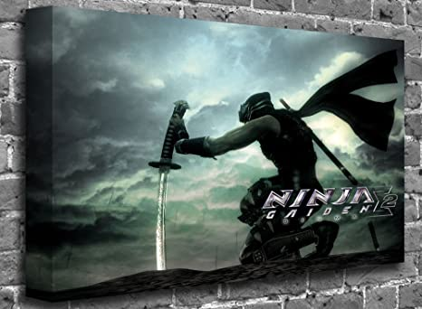 Amazon.com: Ninja Gaiden 2 Video Game Playstation X-Box ...