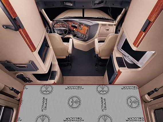 LA WEB DEL COLCHON - Colchón Basic Truck 70 x 180 x 14 cms.: Amazon.es: Hogar