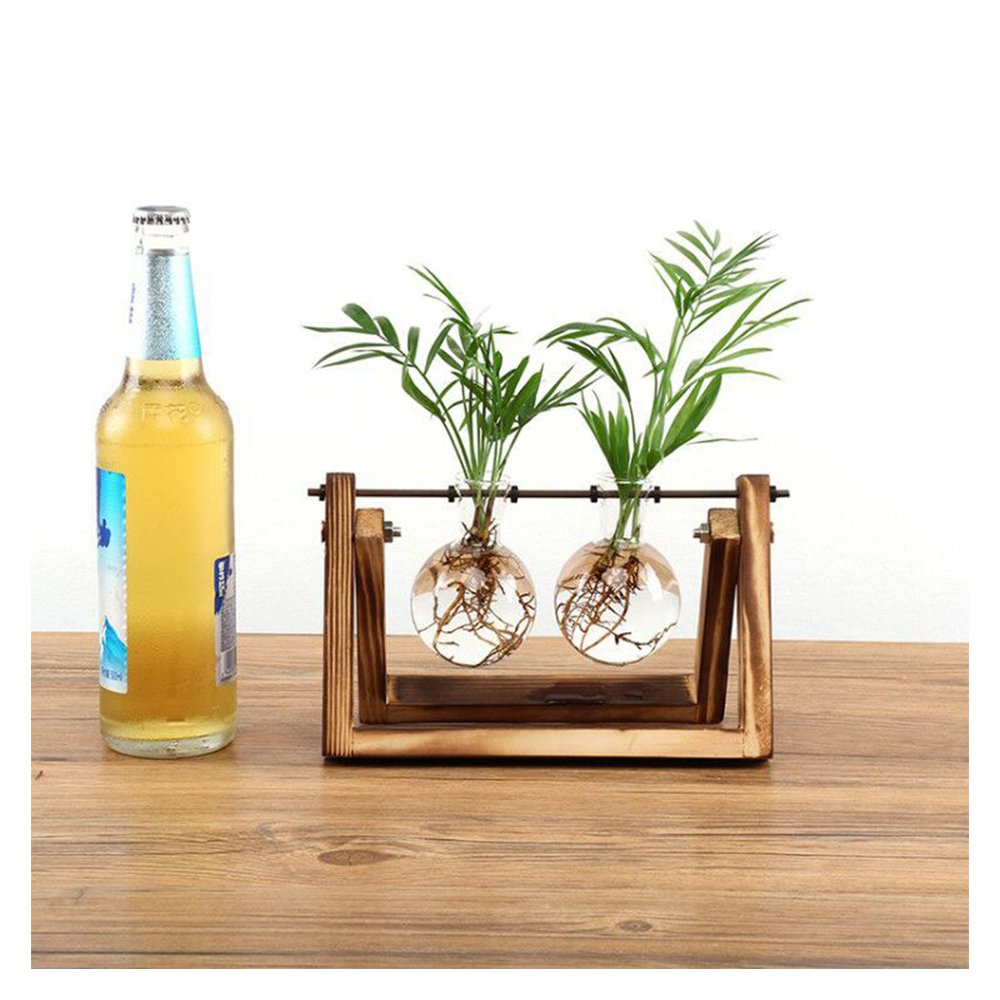 Sotoboo Sotoboo Sotoboo Scindapsus Behälter – Desktop Glas Pflanzkasten Terrarium mit Holz Ständer Glas Vase Halterung Hydrokultur Pflanze Transparent Vase für Home Office Desktop Kaffee Book Shop, Farblos, Three B07FP4QLGJ Vasen f882c1