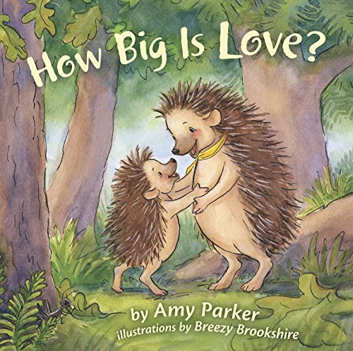 How Big Is Love? (padded board book) (Faith, Hope, Love)