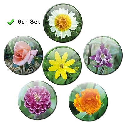 Diseño de flores - colorido imanes conjunto de 6 de diámetro ...