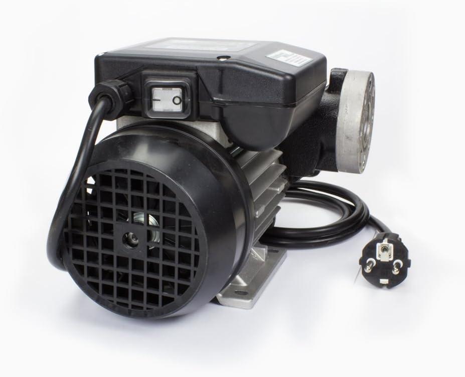 Dieselpumpe 230 Volt Piusi mit Magnet Abscheider selbst ansaugend 1 St/ück