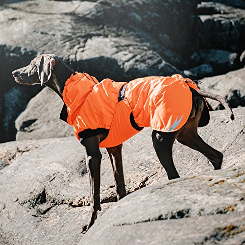 Hurtta Pet Collection Summit Parka for Dogs, 8'', Cherry by Hurtta (Image #4)