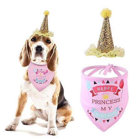 Pañuelo Para Perros, Perro Sombrero Del Cumpleaños, Patrón ...