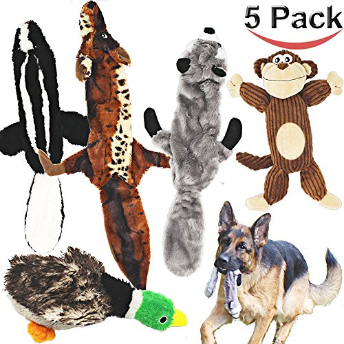 61Z1N82sl0L - Jalousie 5 pack dog squeaky toys low stuffing plush for small medium large dog pets