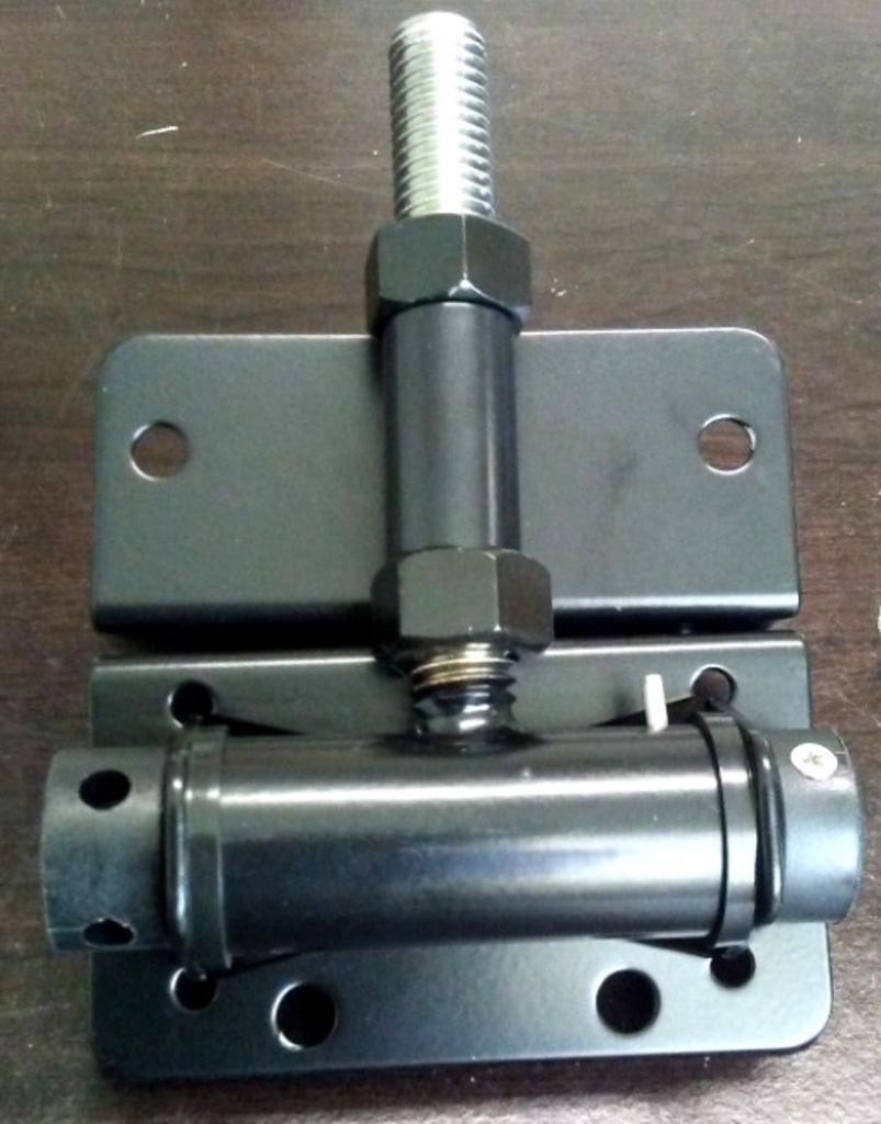 Pair of Horizontal Adjustable Self-Closing Stainless Steel Hinges (Painted) (Black)