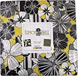 Kanvas Studio Lemon Twist 10X10 Pack 42 10-inch Squares Layer Cake Benartex, Assorted