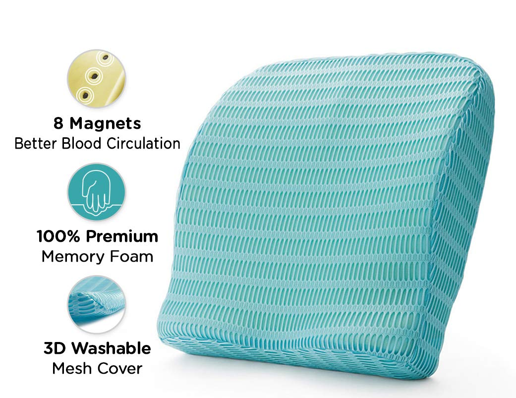 HealthSense Soft-Spot BC 21 Memory Foam Back Cushion and Orthopedic Backrest Pillow with Lumbar Support (Ice Blue) product image