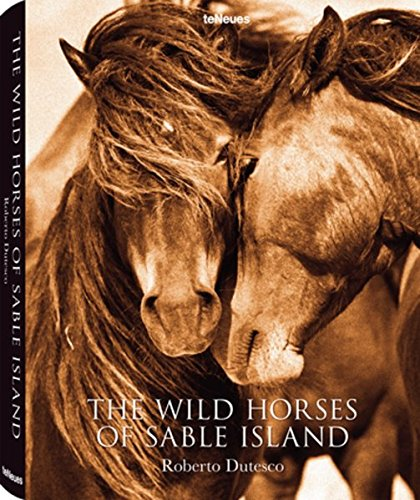 The Wild Horses of Sable Island -