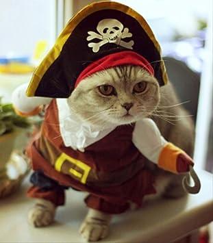 YMKWQF Ropa para Mascotas Ropa Divertida del Gato Traje De La ...