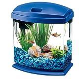 fish tank small - Aqueon LED MiniBow Aquarium Starter Kits with LED Lighting, 1 Gallon, Blue