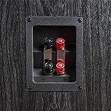 Polk Audio Signature Series S55 American Hi-Fi Home