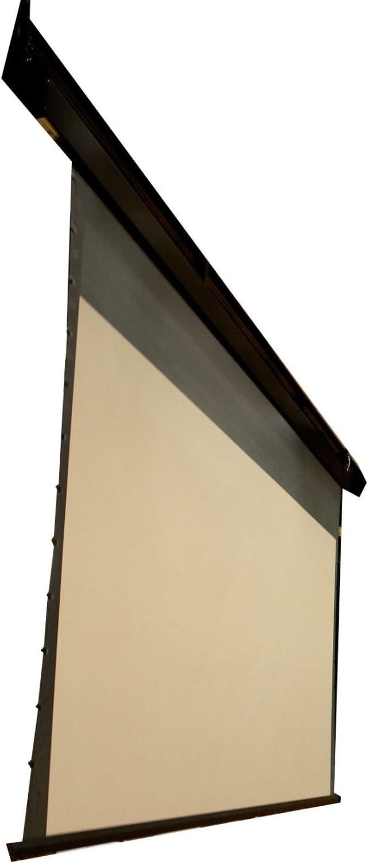 Amazon.com: Draper SL8 Soporte de techo para proyector – 100 ...