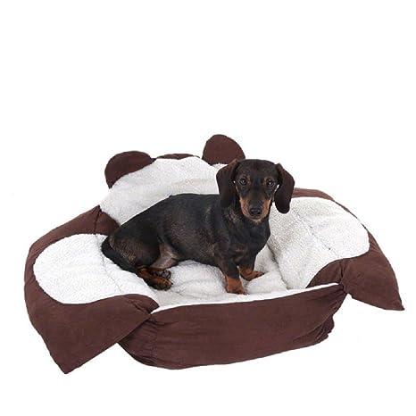 Pequeño oso perro o gato Snuggle cama
