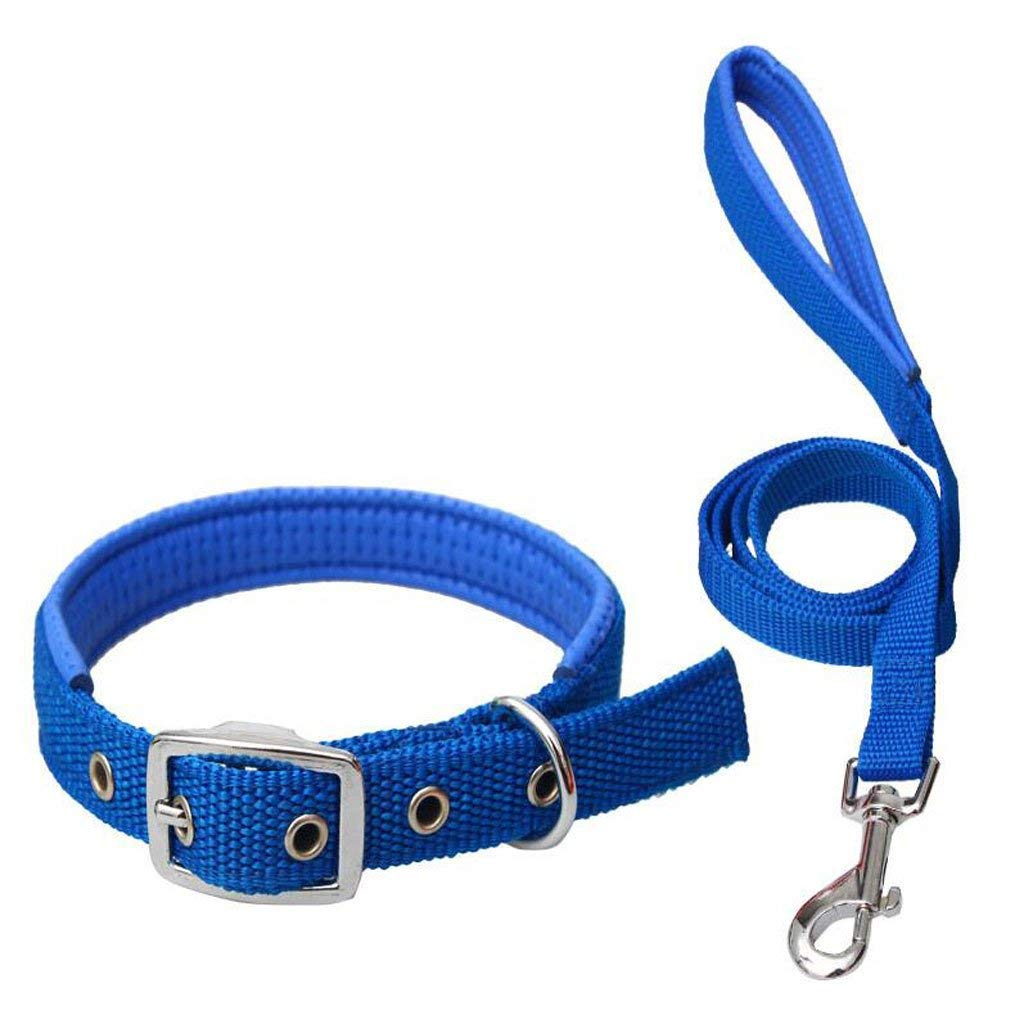 bluee S bluee S Huertuer Traction Rope, Dog leash Pet Chain Nylon Weave Outdoor Sports Training Traction Fashion Soft Comfortable and Durable Multi color Optional (Black bluee Red) (color   bluee, Size   S)