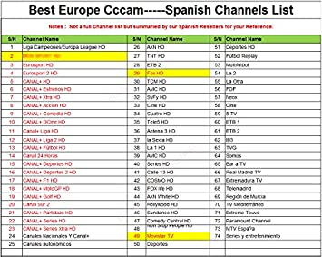 Best Europe CCcam Cline Server 6 months for Satellite Decoder ...