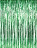 GIFTEXPRESS 2-Pack Green Foil Fringe Curtain (2, Green) Party Backdrop/Party Photo Booth Backdrop/Green Fringe Backdrop