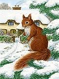 Cheap Caroline's Treasures ASA2014GF Red Squirrel & Cottage Garden Size Flag, Small, Multicolor