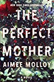 Download The Perfect Mother: A Novel in PDF ePUB Free Online