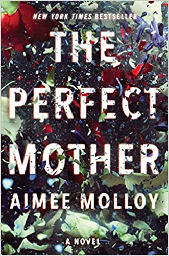 Image result for the perfect mother book