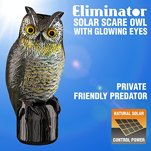 Eliminator Scarecrow Owl Decoy with Scary Lighted Eyes and Frightening Sound – Solar Powered & Motion Activated – Realistic Predator Scares Away and Repels All Birds, Rabbits, Squirrels & other Pests