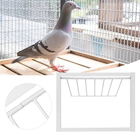 Jaula para pájaros T-Trap Puerta de Hierro para casa Trampa de ...