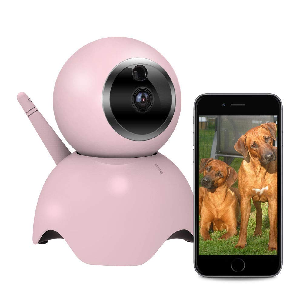 Four Noses Dog Camera with 2 Way Audio, Pet Monitor, Motion Detection Alarm, Remote Camera for Cat/Dog, Pan/Tilt, Connect with iOS and Android. Free App. (Renewed)