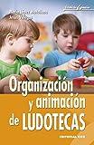 Organización y animación de ludotecas (Escuela de animación)