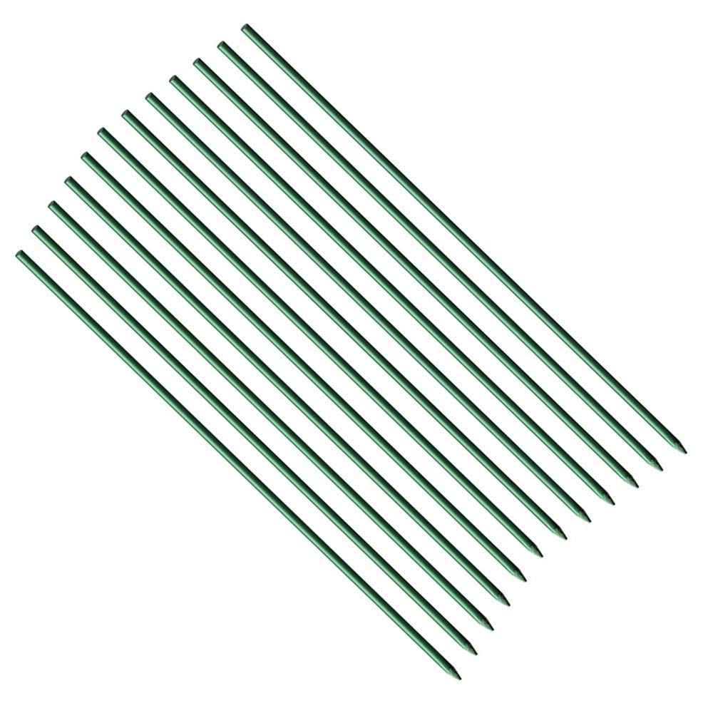 Eco.Fabric 2-Feet 1/5-Inch Dia Fiberglass Garden Stakes,Tomato Stakes,Plant Stakes,Fiberglass Rod,Climbing Plants Supports Pole Dark Green 50pack