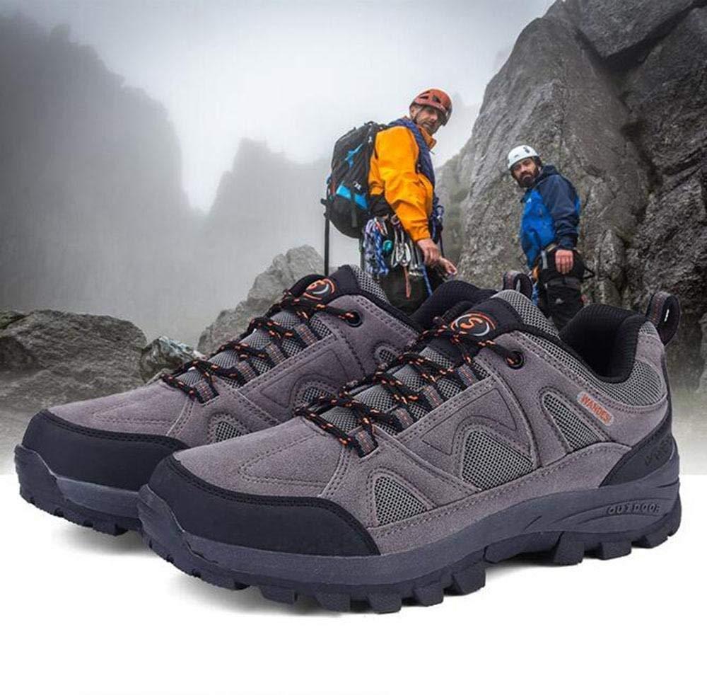 FuweiEncore sportsOutdoor Wanderschuhe männer und Frauen Wanderschuhe Anti-rutsch niedrig zu Schuhe helfen Outdoor Schuhe zu (Farbe   Grau, Größe   36) d575f5