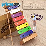 Wooden Xylophone for Kids: Perfectly Sized Musical Toy for Kids - With Clear Sounding Metal Keys, Two Child-Safe Wooden Mallets and a Free Eagle Whistle for Music-Making Fun