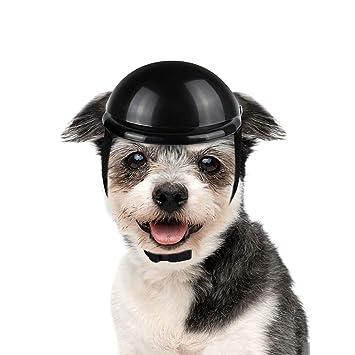Amazon.com: LESYPET Casco de perro – Casco de seguridad ...