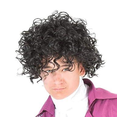 Amazon.com: Prince Música adulto disfraz peluca: Clothing