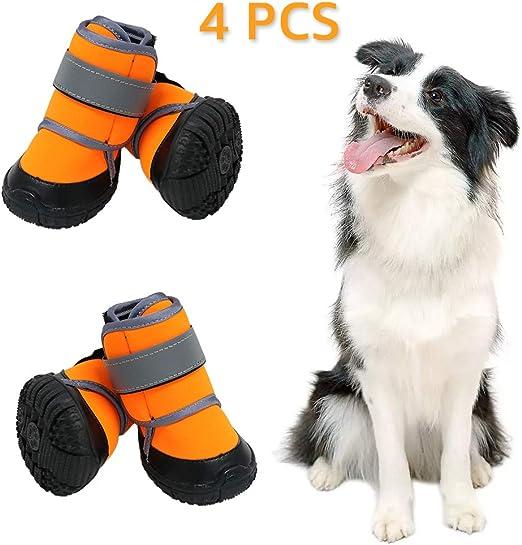 botas para perros amazon