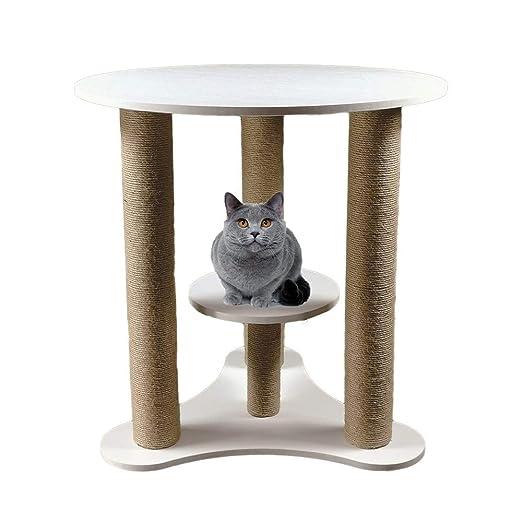 Cvbndfe Personas Mascotas Compartir Gato Multifuncional Inicio ...